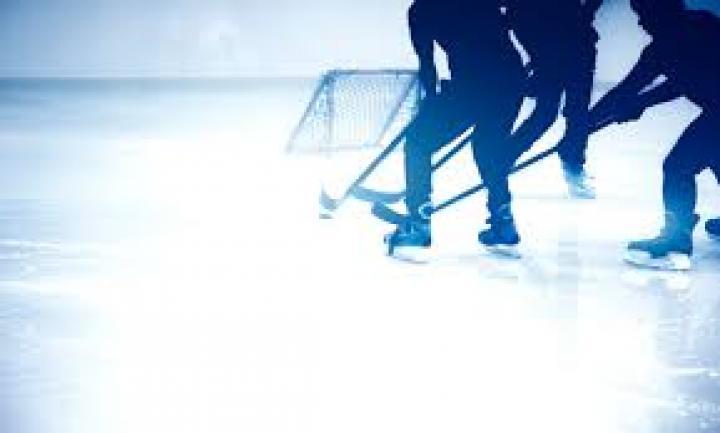 Die NHL Tipps